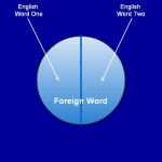 A Foreign Word With Multiple English Translations